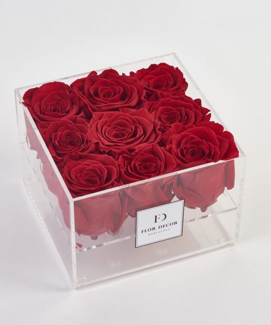 Acrylic box of preserved roses
